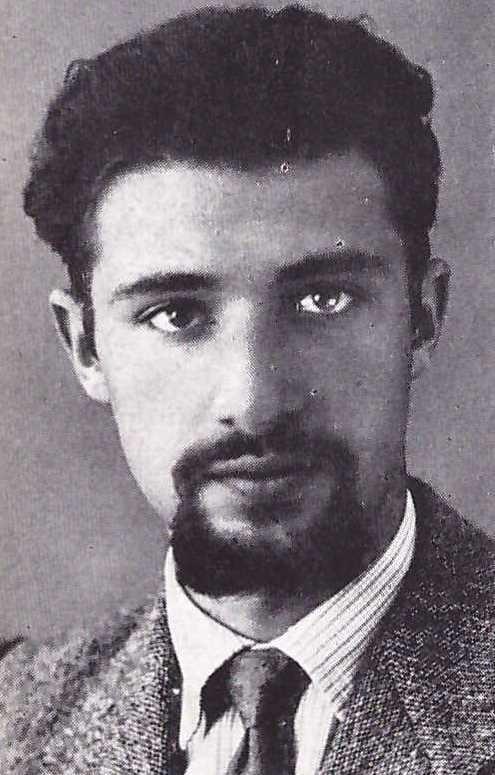 Sandro Ermanno Pomini